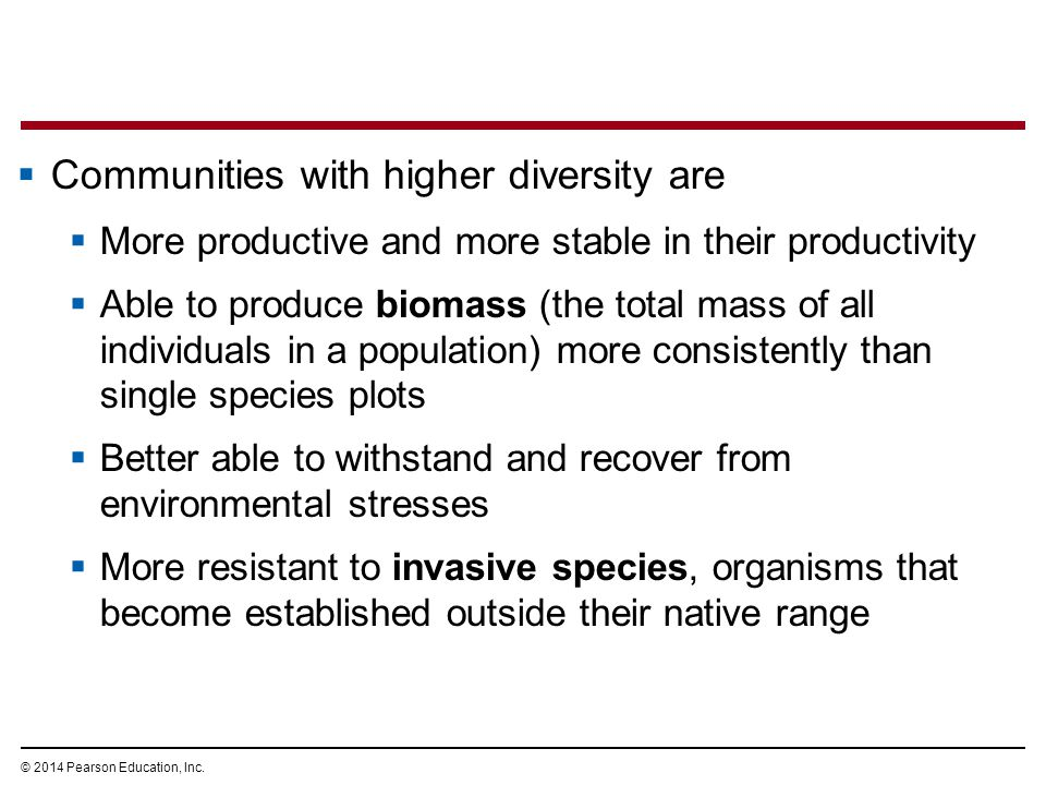 Communities with higher diversity are
