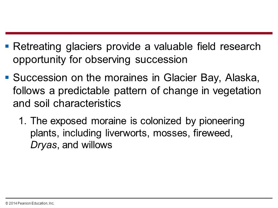 Retreating glaciers provide a valuable field research opportunity for observing succession