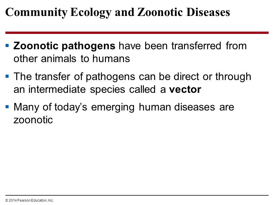 Community Ecology and Zoonotic Diseases