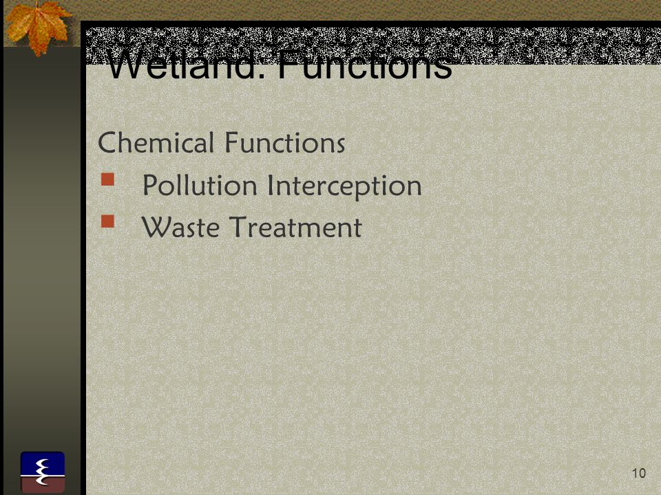 Wetland: Functions Chemical Functions Pollution Interception