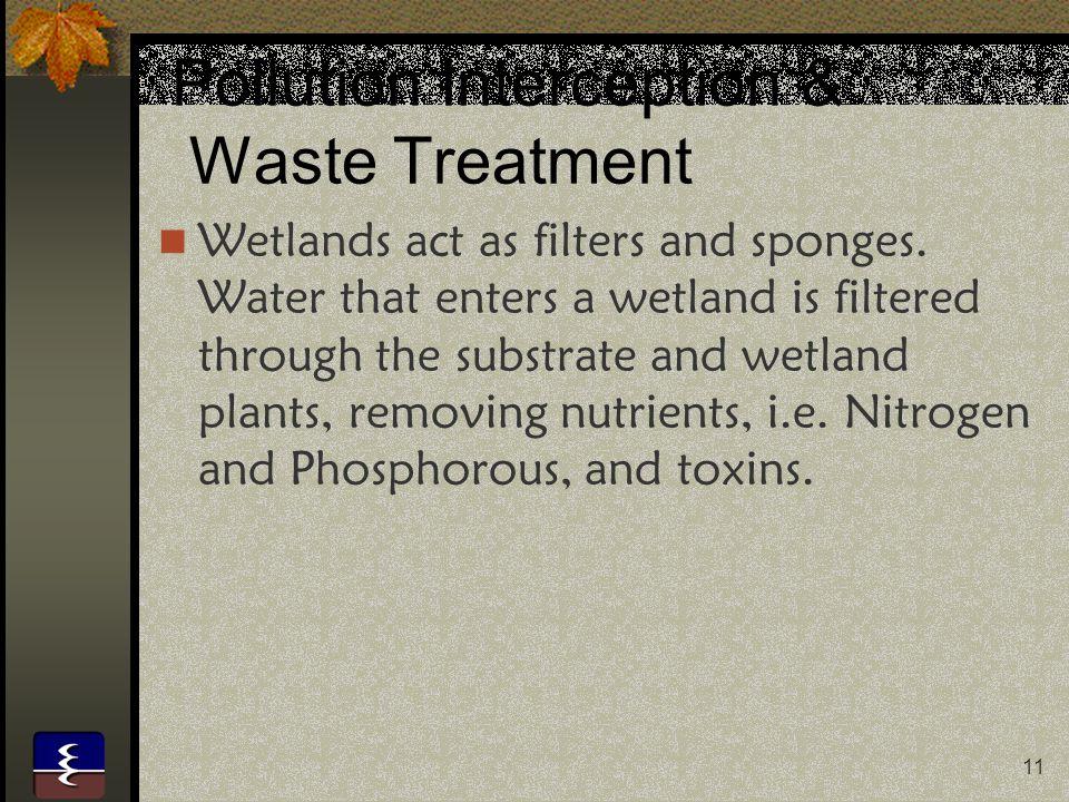 Pollution Interception & Waste Treatment