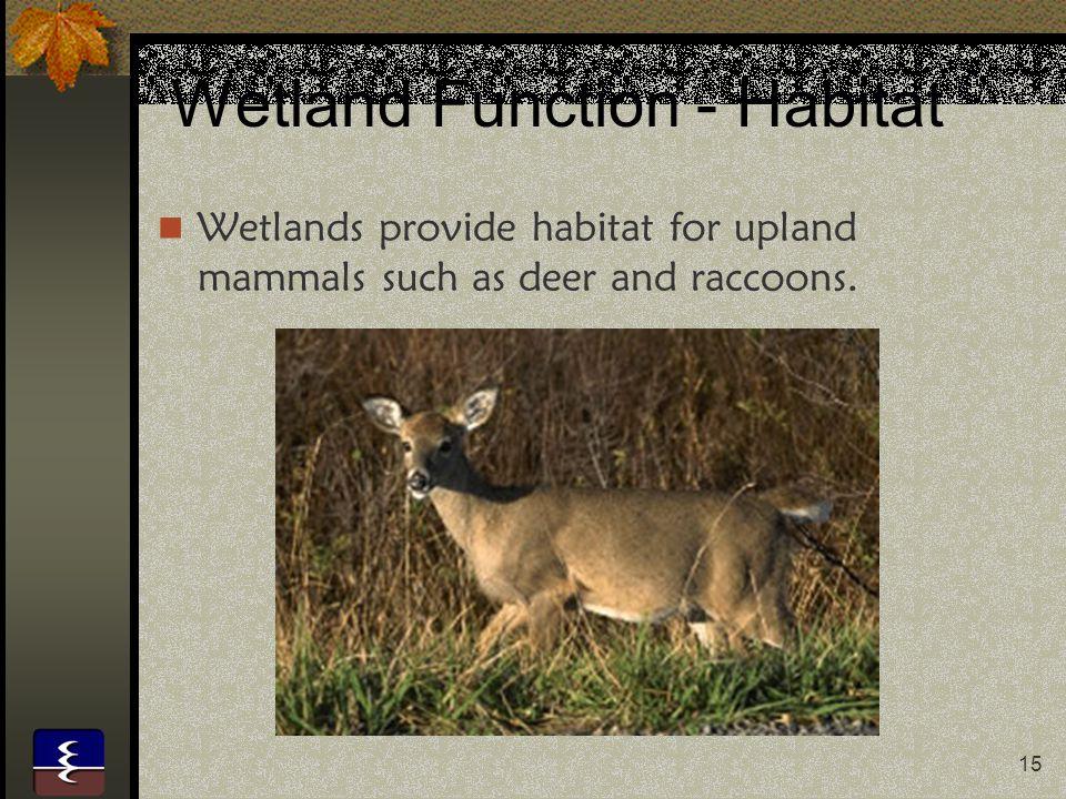 Wetland Function - Habitat