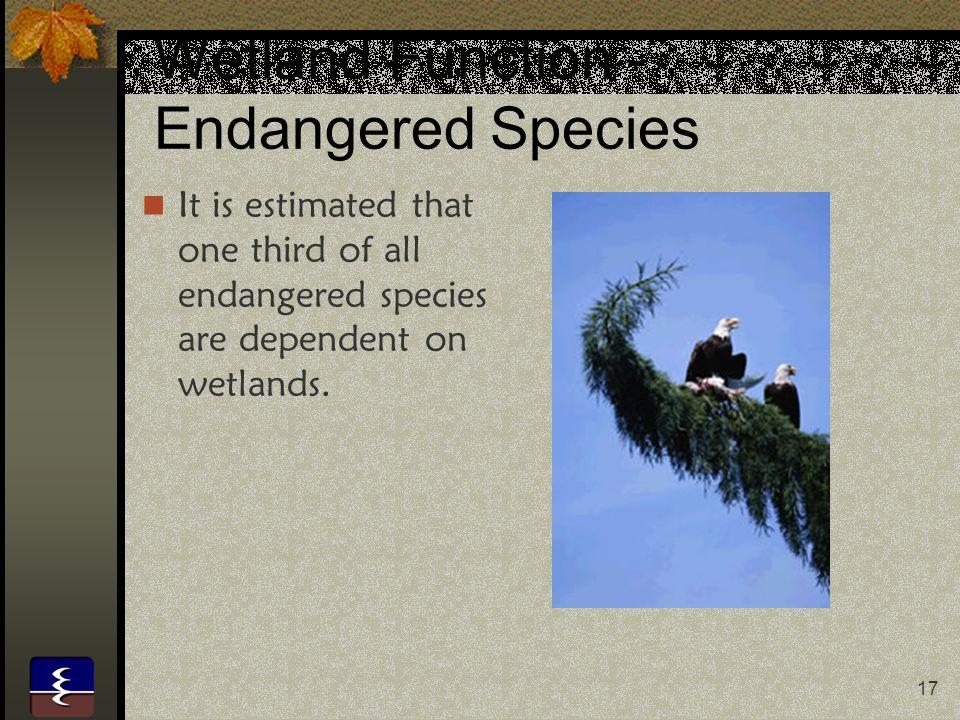 Wetland Function - Endangered Species