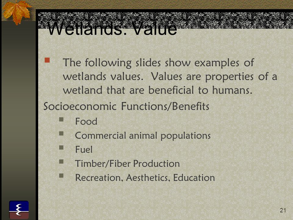 Wetlands: Value The following slides show examples of wetlands values. Values are properties of a wetland that are beneficial to humans.