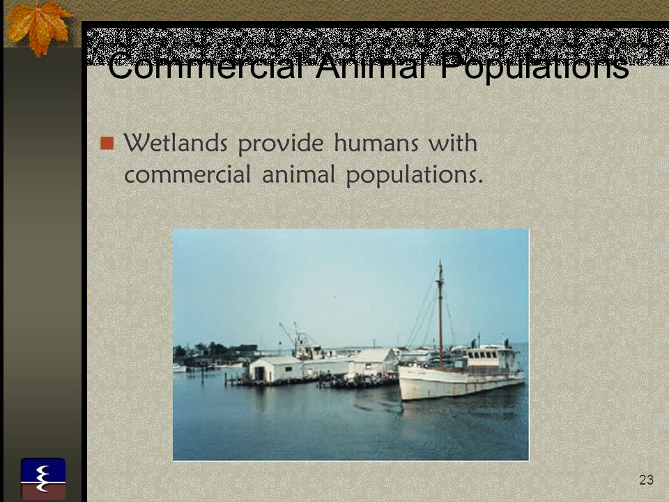 Commercial Animal Populations