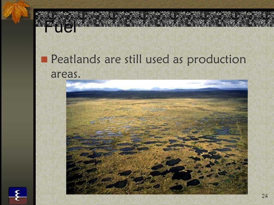 Fuel Peatlands are still used as production areas.