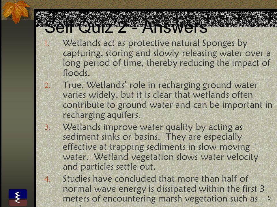 Self Quiz 2 - Answers