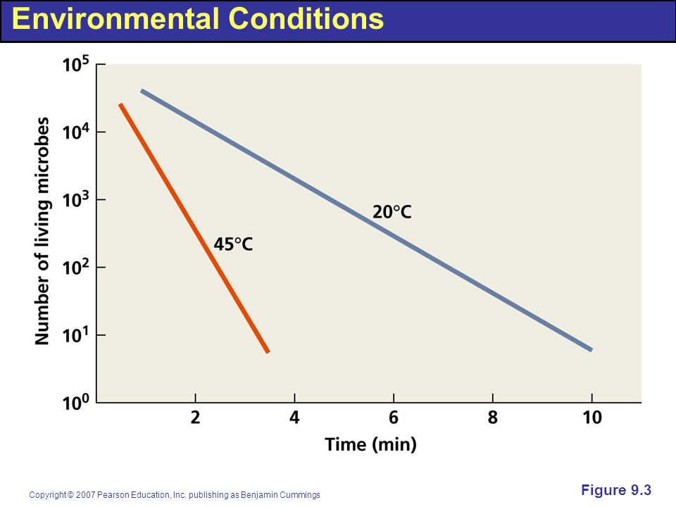Environmental Conditions