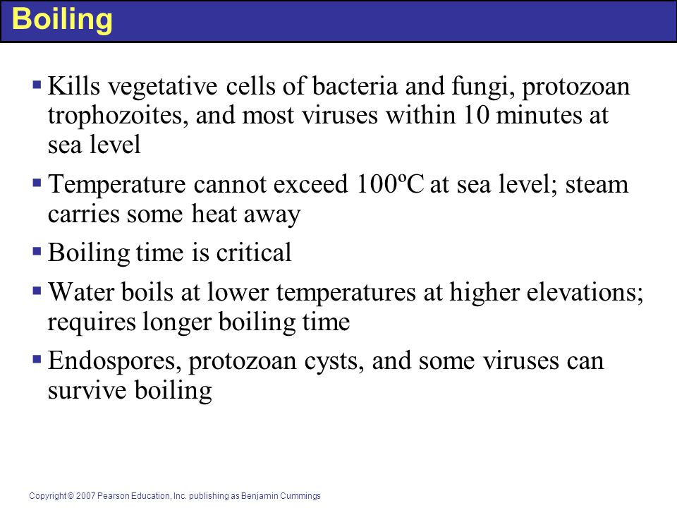 Boiling Kills vegetative cells of bacteria and fungi, protozoan trophozoites, and most viruses within 10 minutes at sea level.