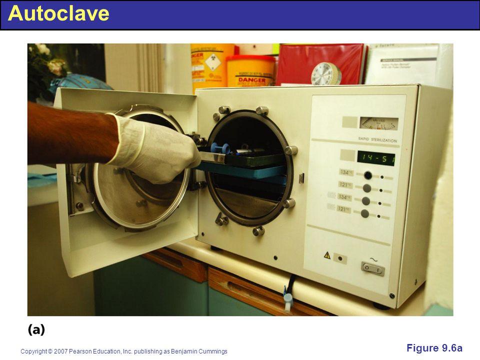 Autoclave Figure 9.6a