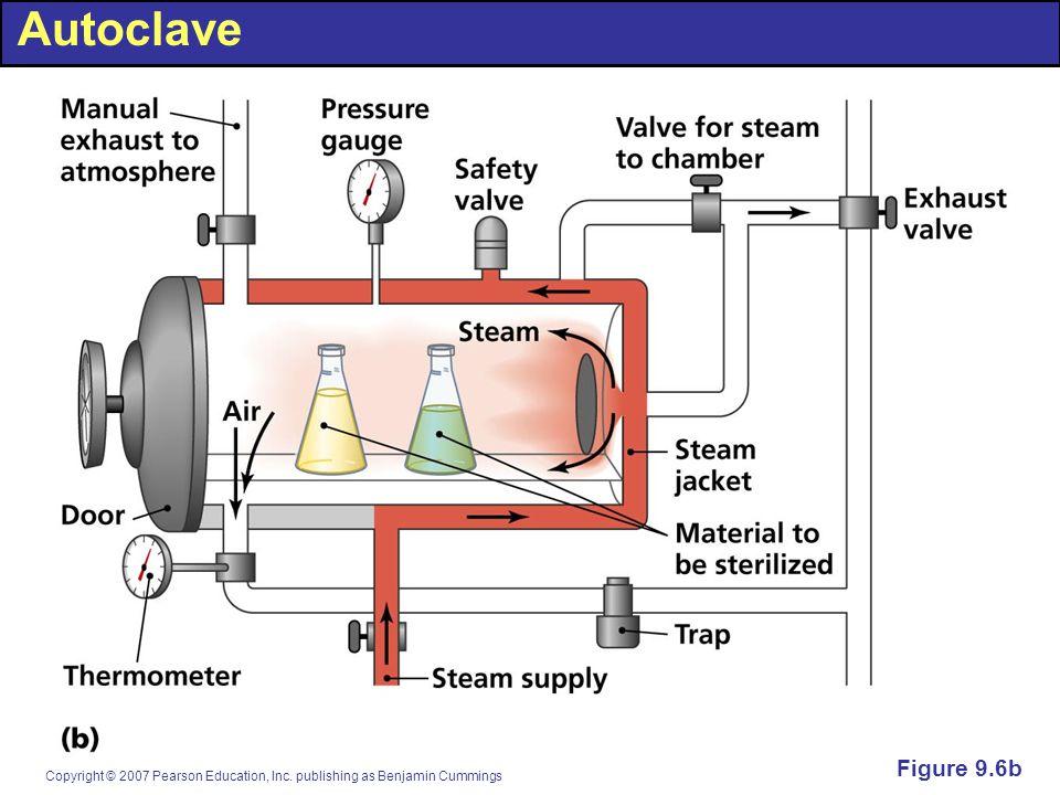 Autoclave Figure 9.6b