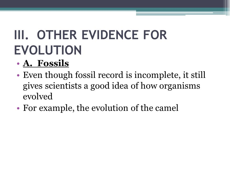 III. OTHER EVIDENCE FOR EVOLUTION