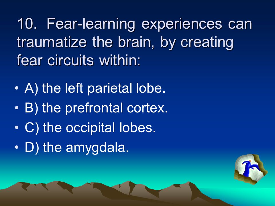 10. Fear-learning experiences can traumatize the brain, by creating fear circuits within: