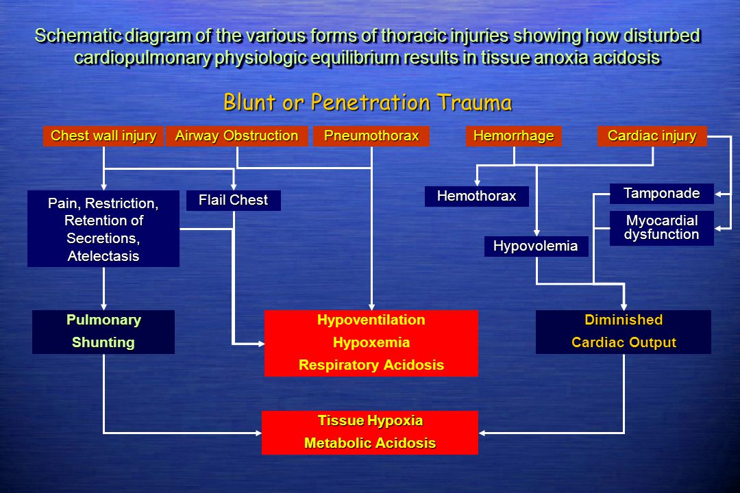 Blunt or Penetration Trauma
