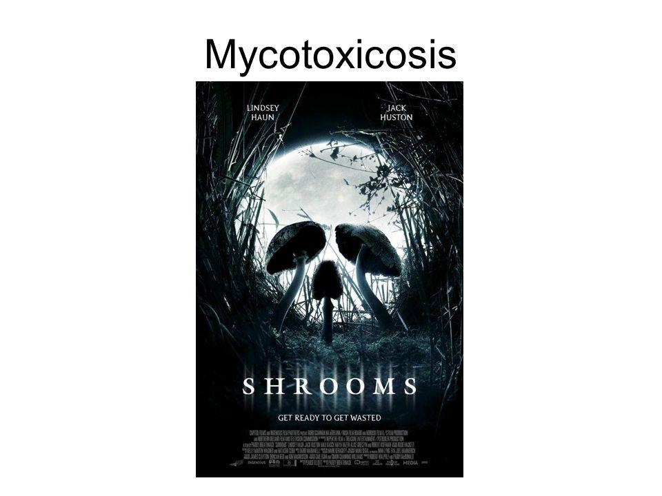 Mycotoxicosis