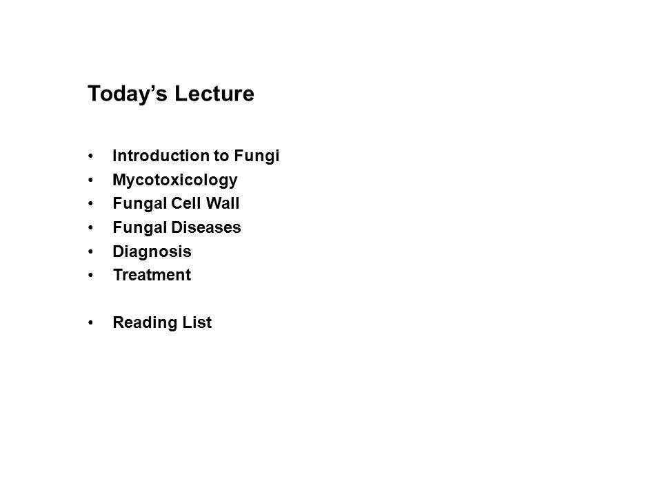 Today's Lecture Introduction to Fungi Mycotoxicology Fungal Cell Wall