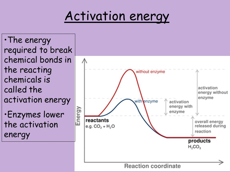 Activation energy The energy required to break chemical bonds in the reacting chemicals is called the activation energy.