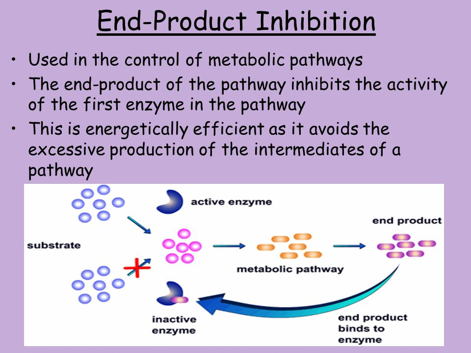 End-Product Inhibition