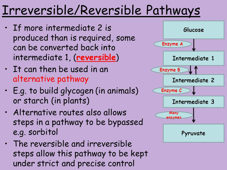 Irreversible/Reversible Pathways