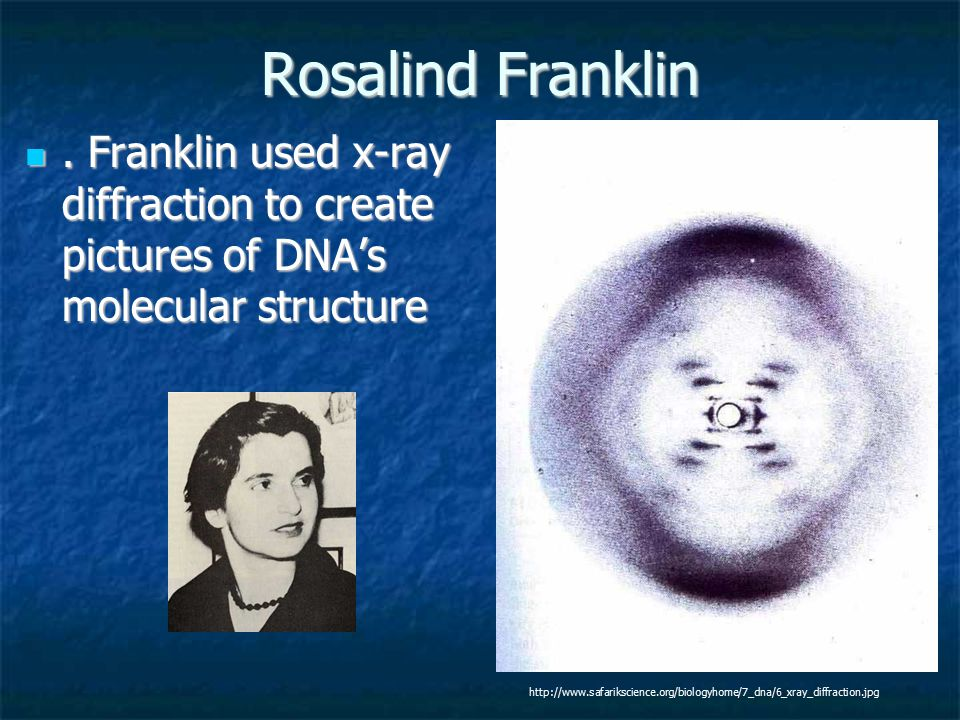 Rosalind Franklin . Franklin used x-ray diffraction to create pictures of DNA's molecular structure.