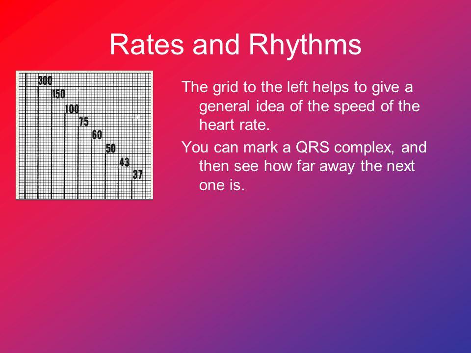 Rates and Rhythms