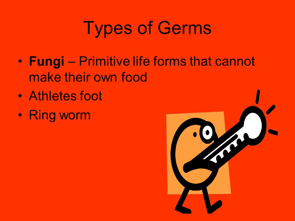 Types of Germs Fungi – Primitive life forms that cannot make their own food Athletes foot Ring worm