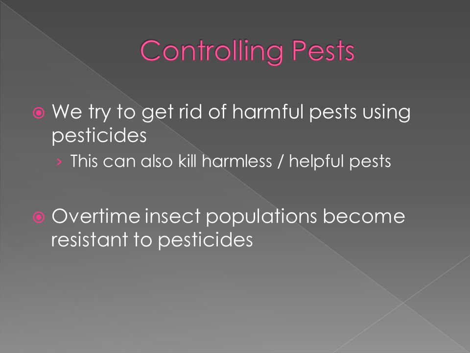 Controlling Pests We try to get rid of harmful pests using pesticides