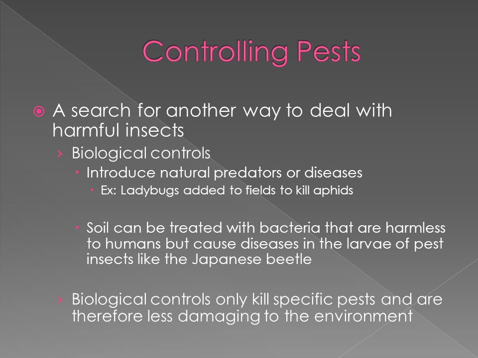 Controlling Pests A search for another way to deal with harmful insects. Biological controls. Introduce natural predators or diseases.
