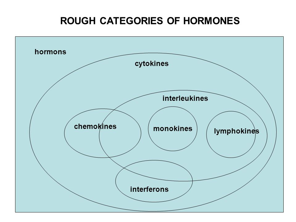 ROUGH CATEGORIES OF HORMONES