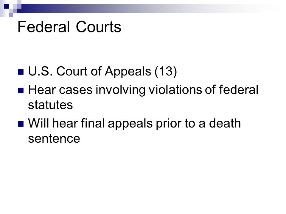 Federal Courts U.S. Court of Appeals (13)