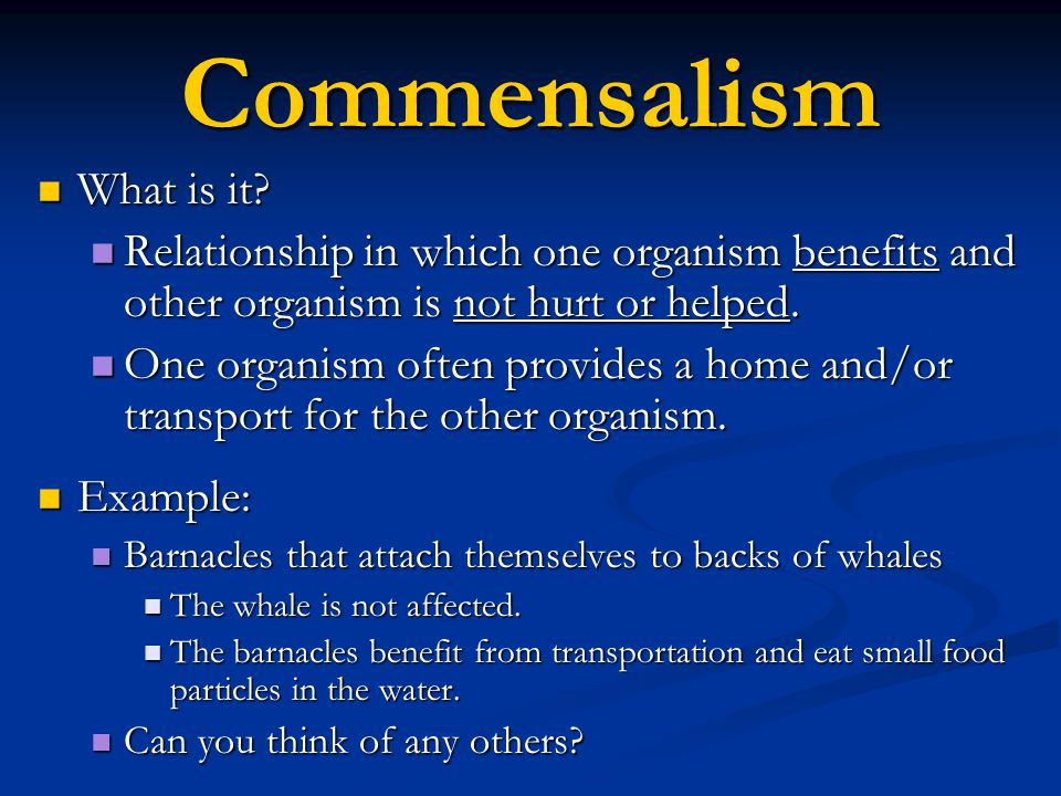 Commensalism What is it