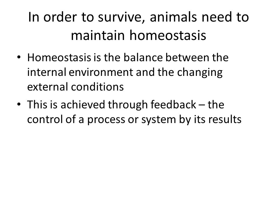 In order to survive, animals need to maintain homeostasis