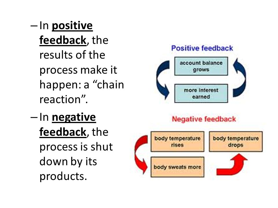 In positive feedback, the results of the process make it happen: a chain reaction .