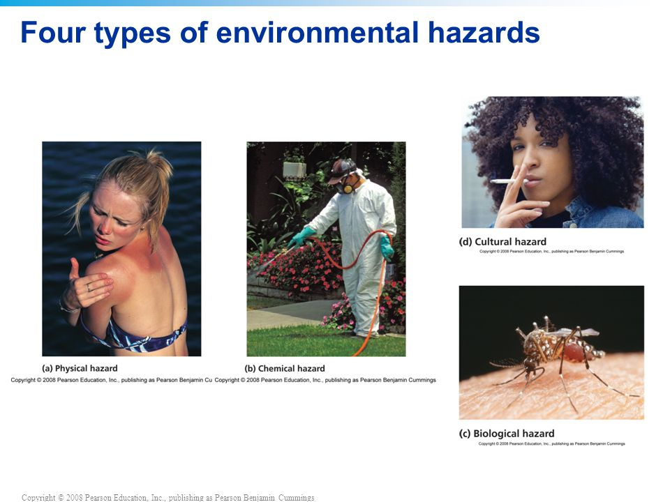 Four types of environmental hazards