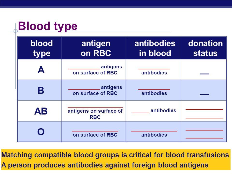 Blood type A B AB O blood type antigen on RBC antibodies in blood