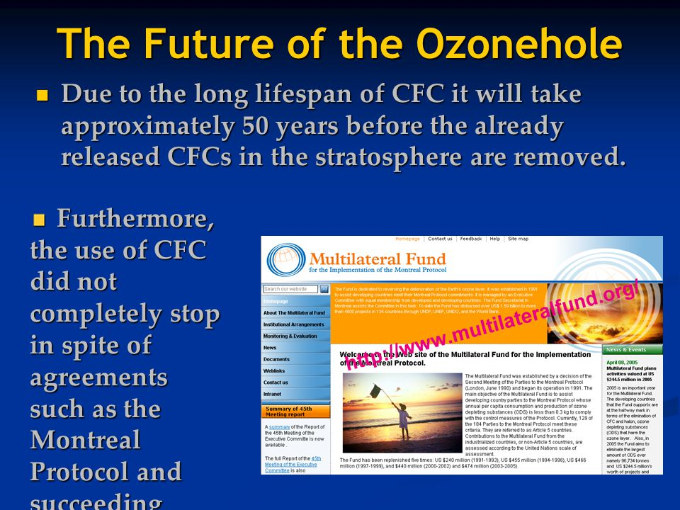 The Future of the Ozonehole