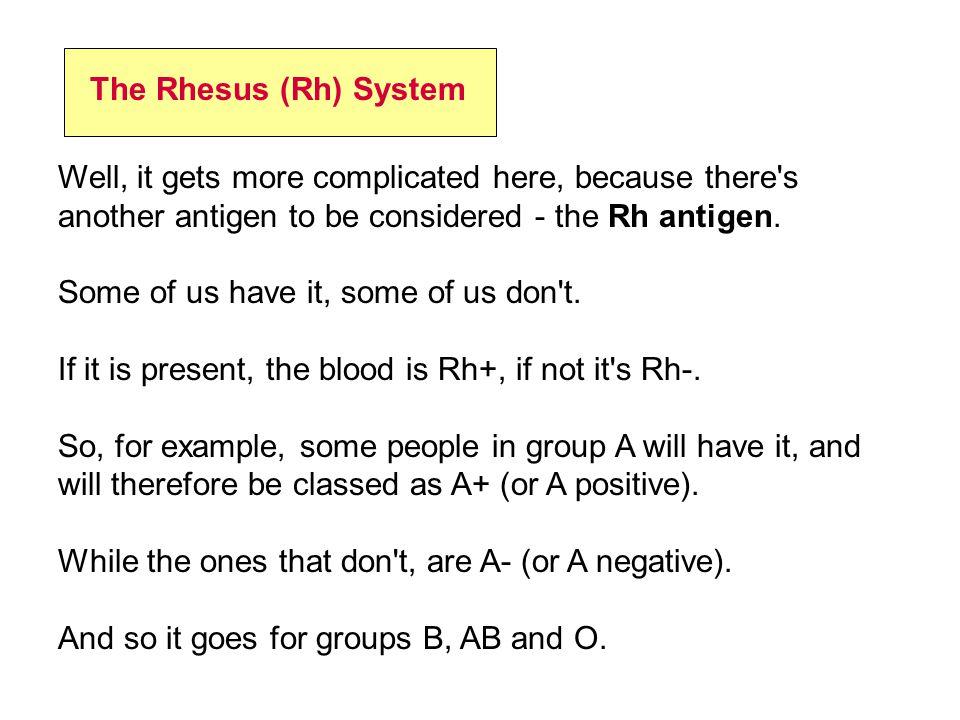 The Rhesus (Rh) System