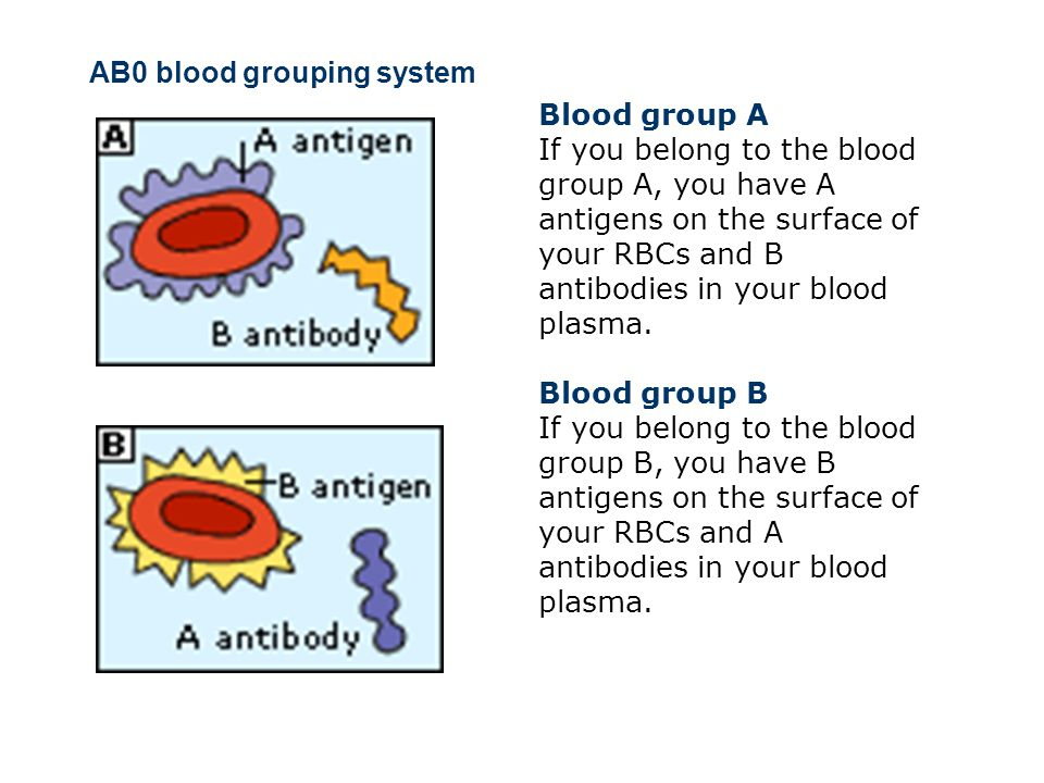 AB0 blood grouping system