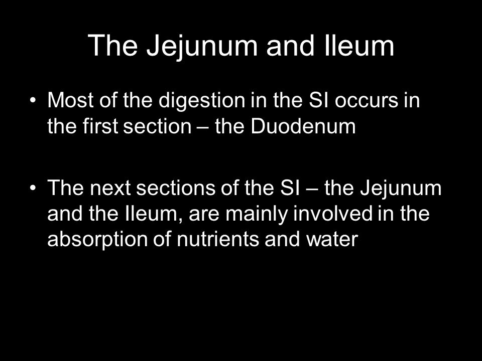 The Jejunum and Ileum Most of the digestion in the SI occurs in the first section – the Duodenum.