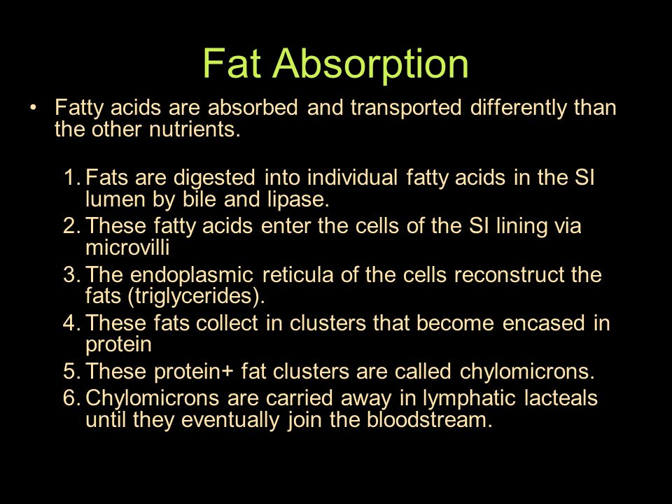 Fat Absorption Fatty acids are absorbed and transported differently than the other nutrients.