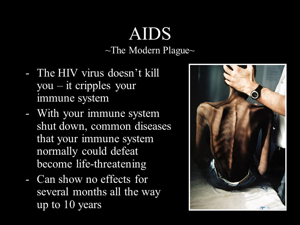 AIDS ~The Modern Plague~