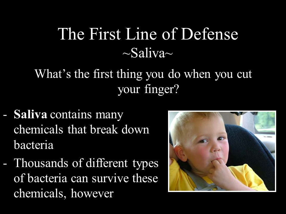 The First Line of Defense ~Saliva~