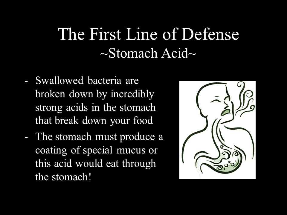 The First Line of Defense ~Stomach Acid~