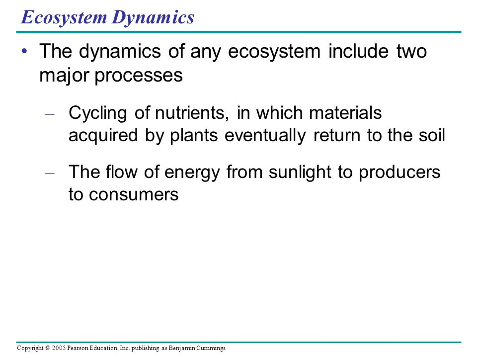 The dynamics of any ecosystem include two major processes