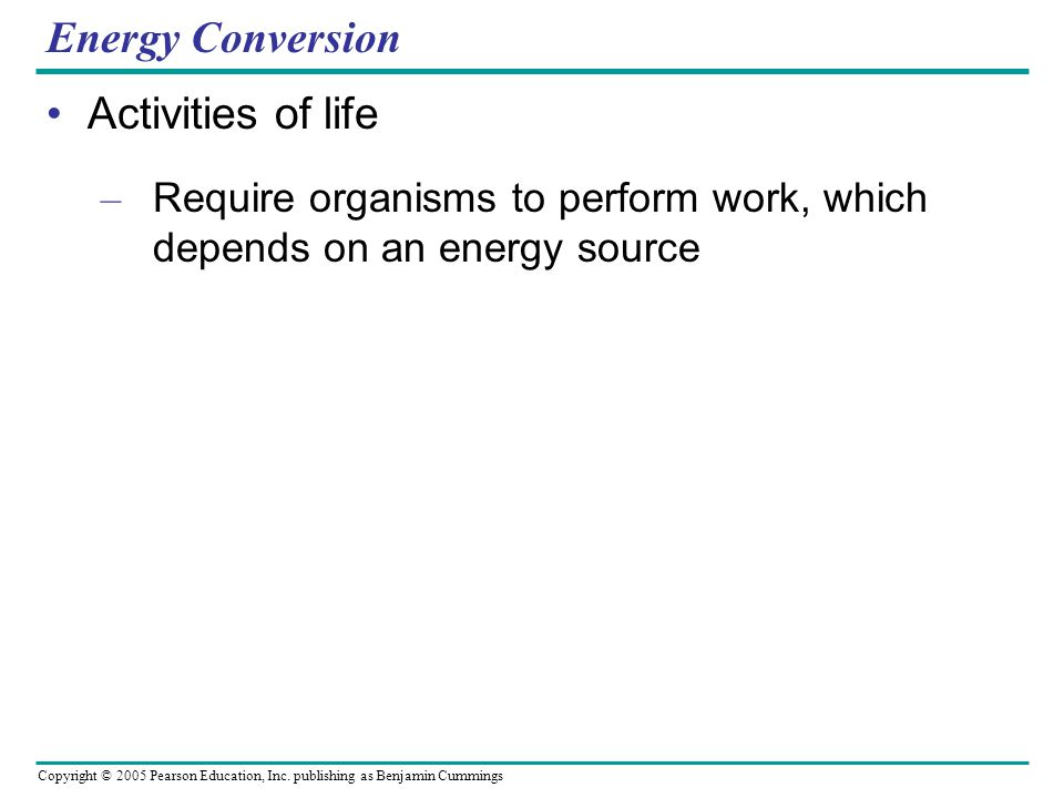 Energy Conversion Activities of life