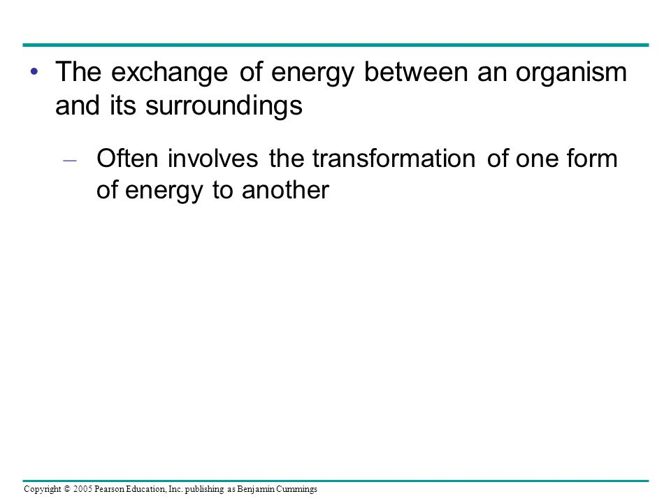 The exchange of energy between an organism and its surroundings