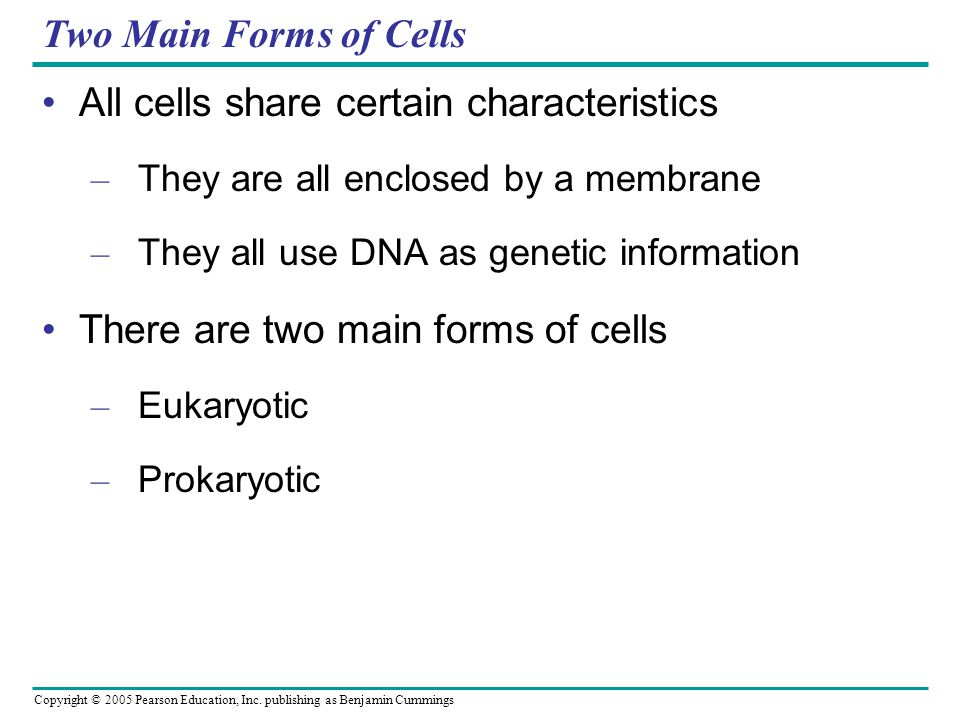All cells share certain characteristics