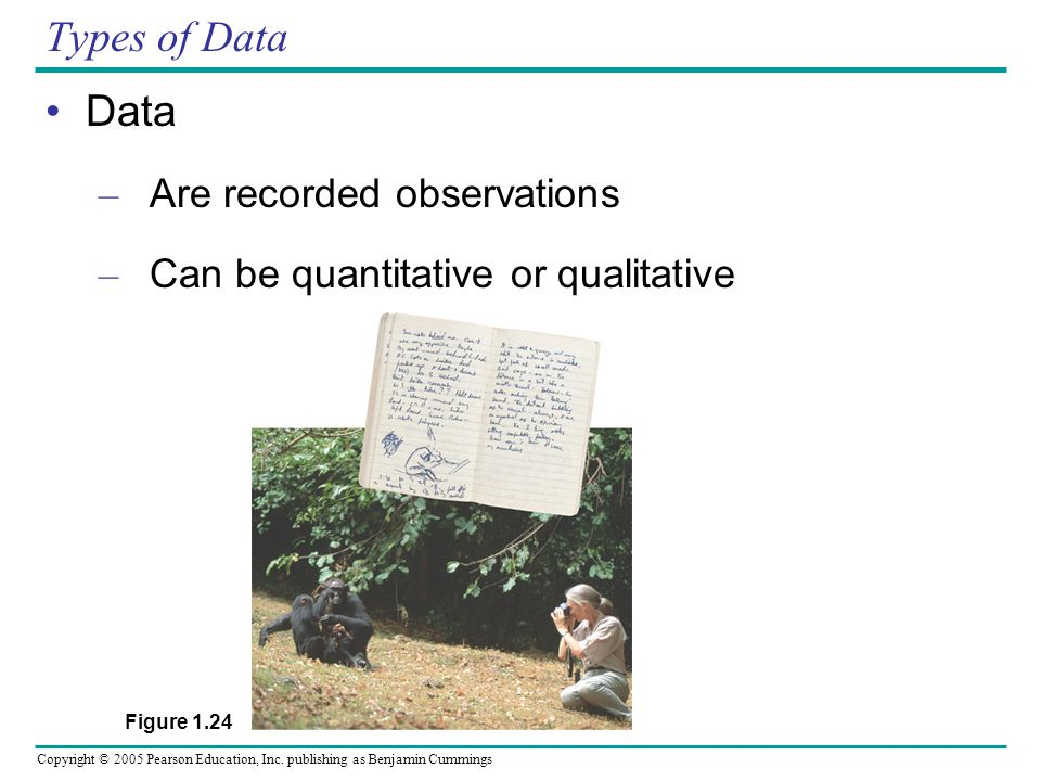 Types of Data Data Are recorded observations