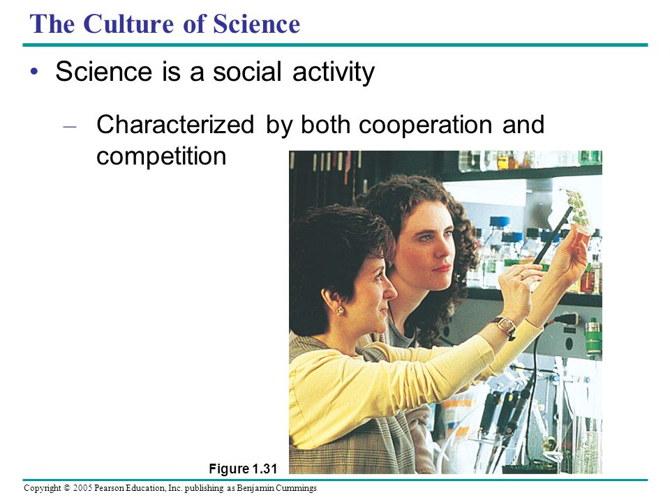 Science is a social activity