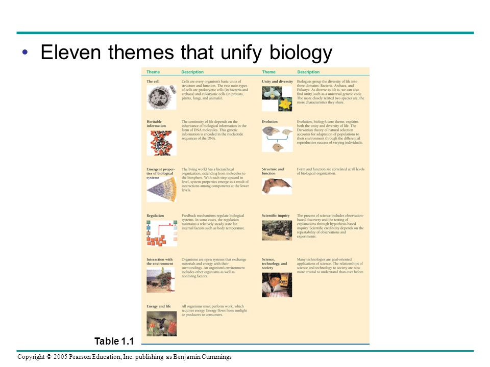 Eleven themes that unify biology